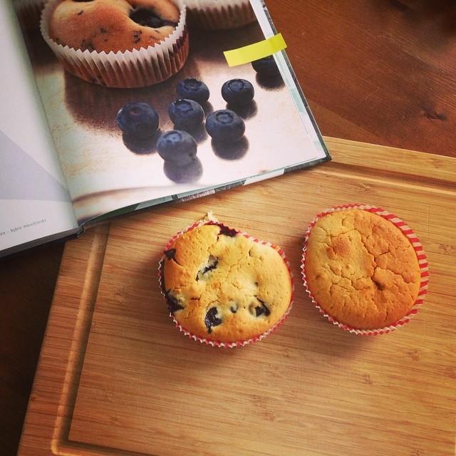 Vegane Blaubeer-Muffins – mmmmmmmh