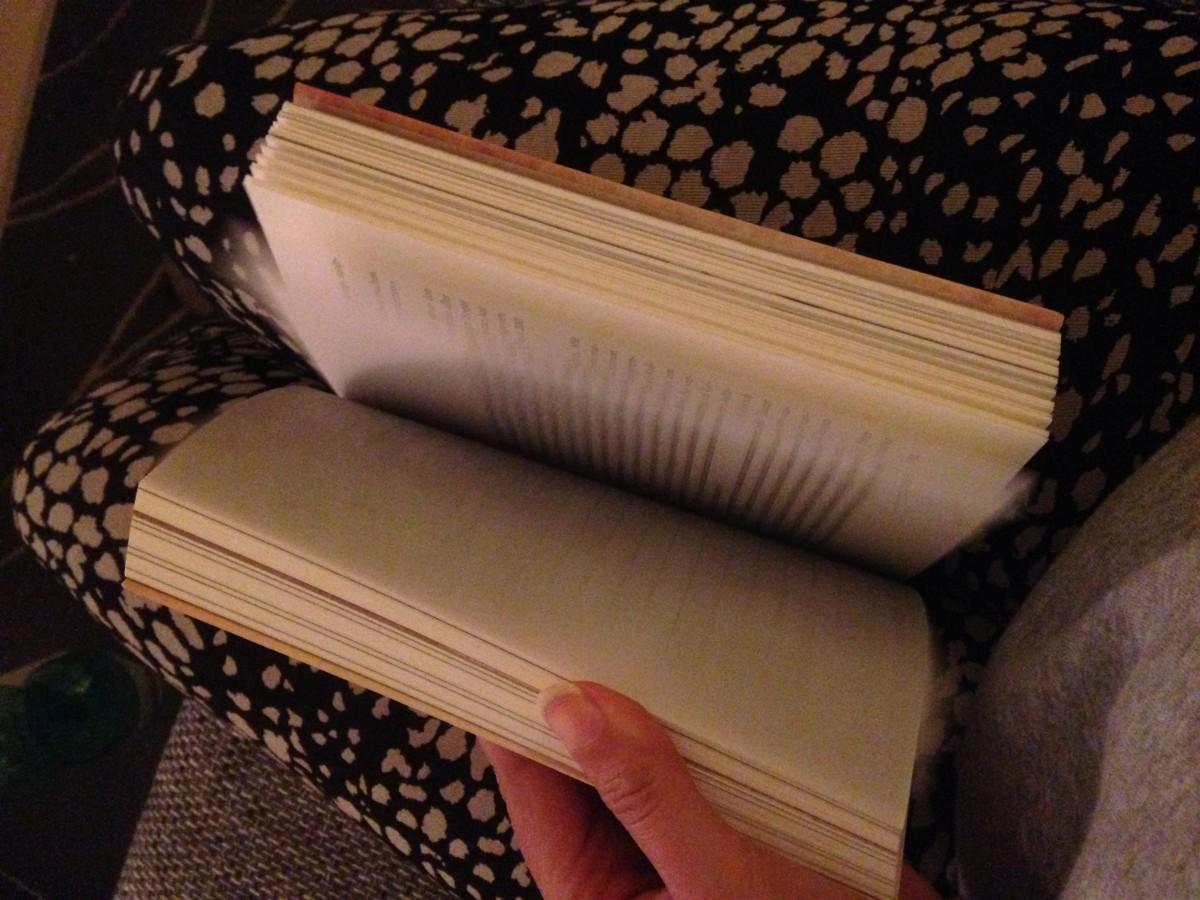 Wenn man länger braucht um ein Buch zu lesen als für eine Weltreise #10Tage