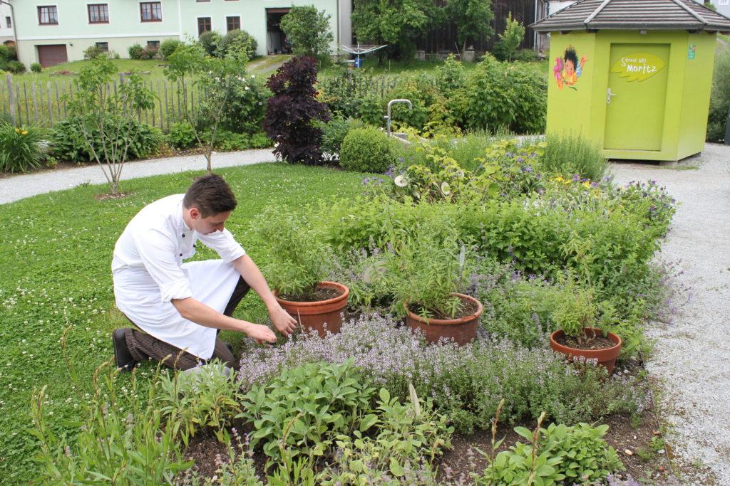 Alle Kräuter für die Speisen und auch für unseren Kochkurs holt Chefkoch René Roth direkt aus dem eigenen Garten hinter dem Gasthaus.