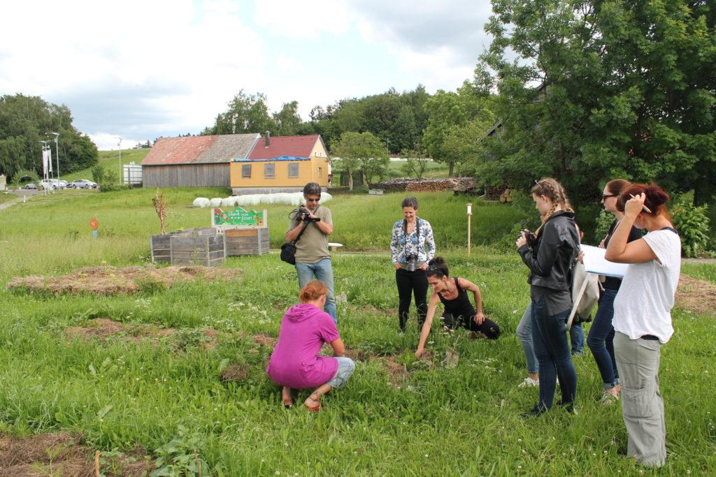 Gärtnern im Frei-Hof