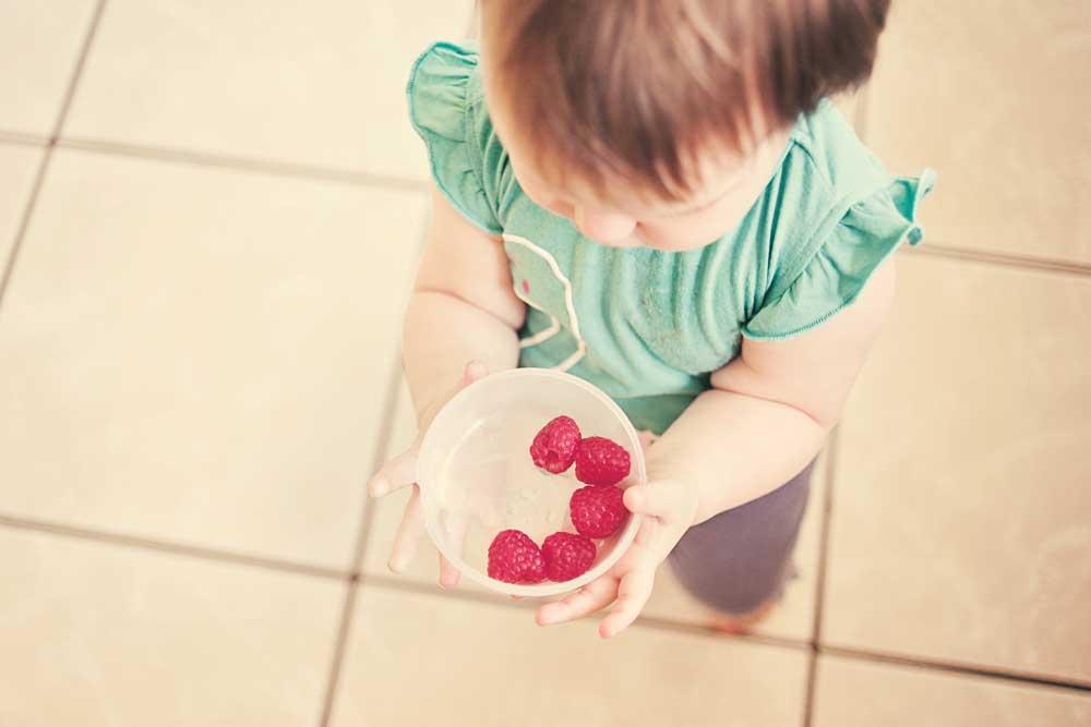 Mama Monday: Vegane Babynahrung aus dem Dampfgarer