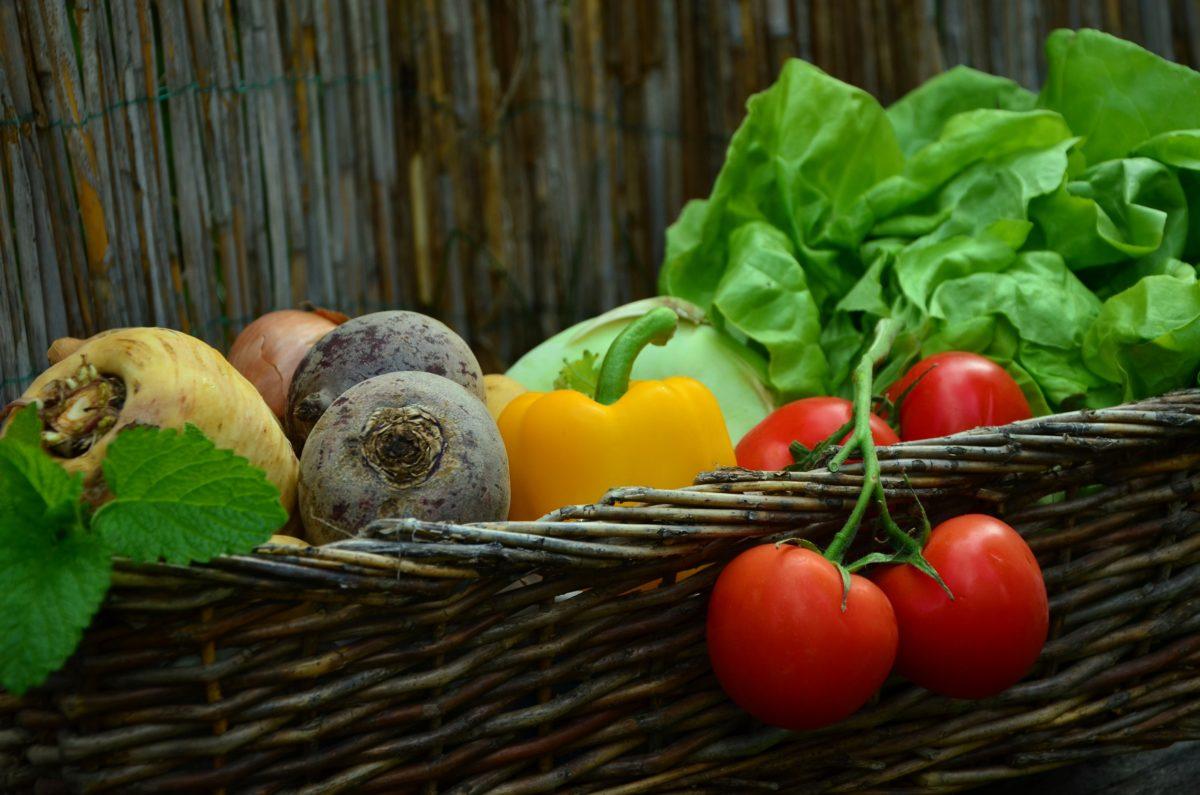 Gastbeitrag: Wie sieht eine optimale vegane Ernährung aus?