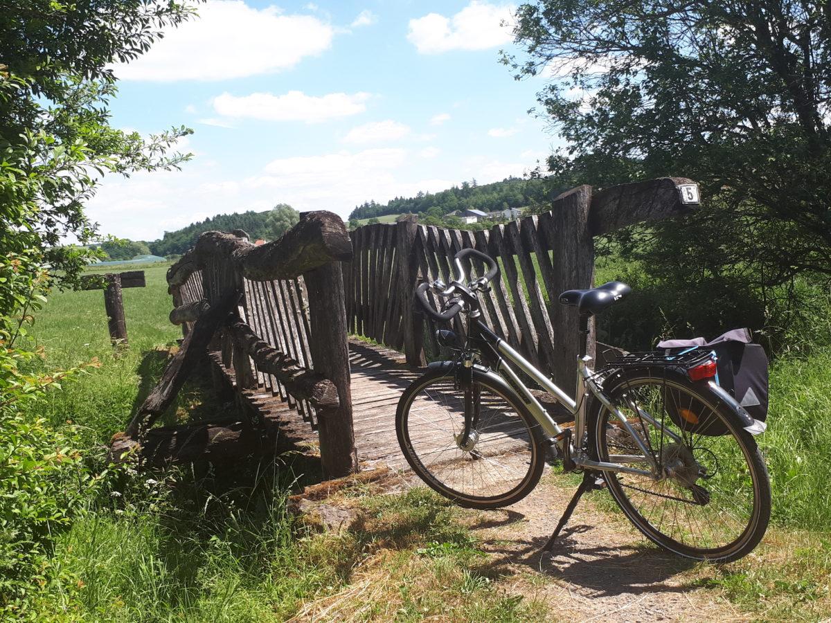 Endlich wieder auf dem Rad: Unterwegs auf dem Maare-Mosel-Radweg in der Moseleifel