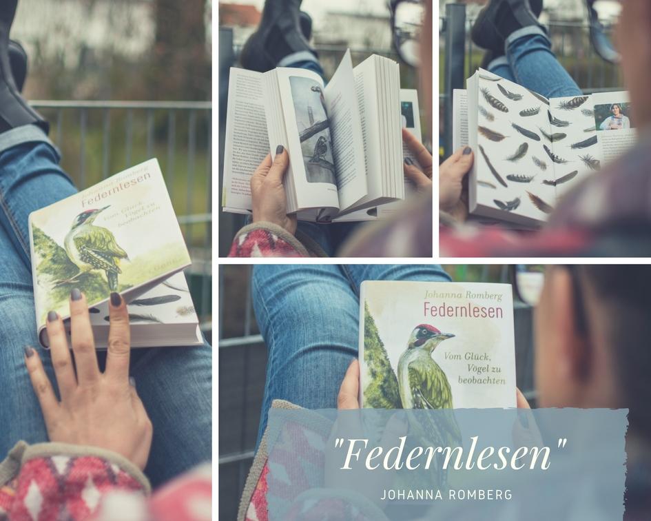 """""""Federnlesen"""": Wie man dank eines Buches zum achtsamen Vogelkenner wird – Buchvorstellung mit Gewinnspiel"""