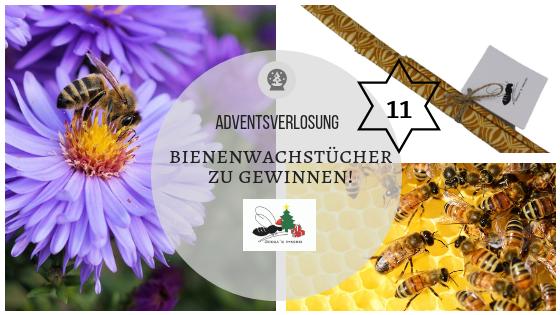 Adventskalender 11. Dezember: Bienenwachstücher – Geht das klar als Veganer?