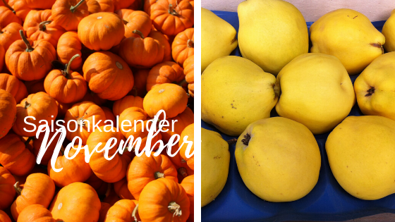 Saisonkalender November – Download FREE PDF