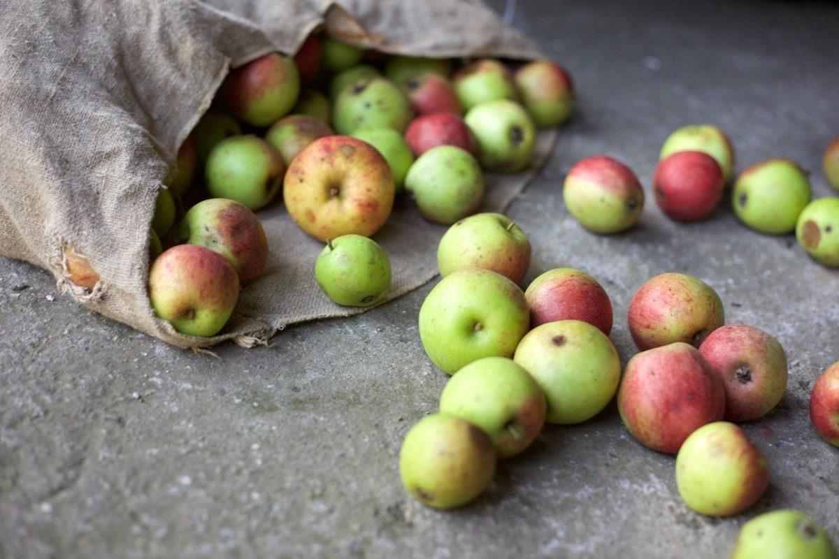 Saisonal einkaufen – was hat es damit auf sich?