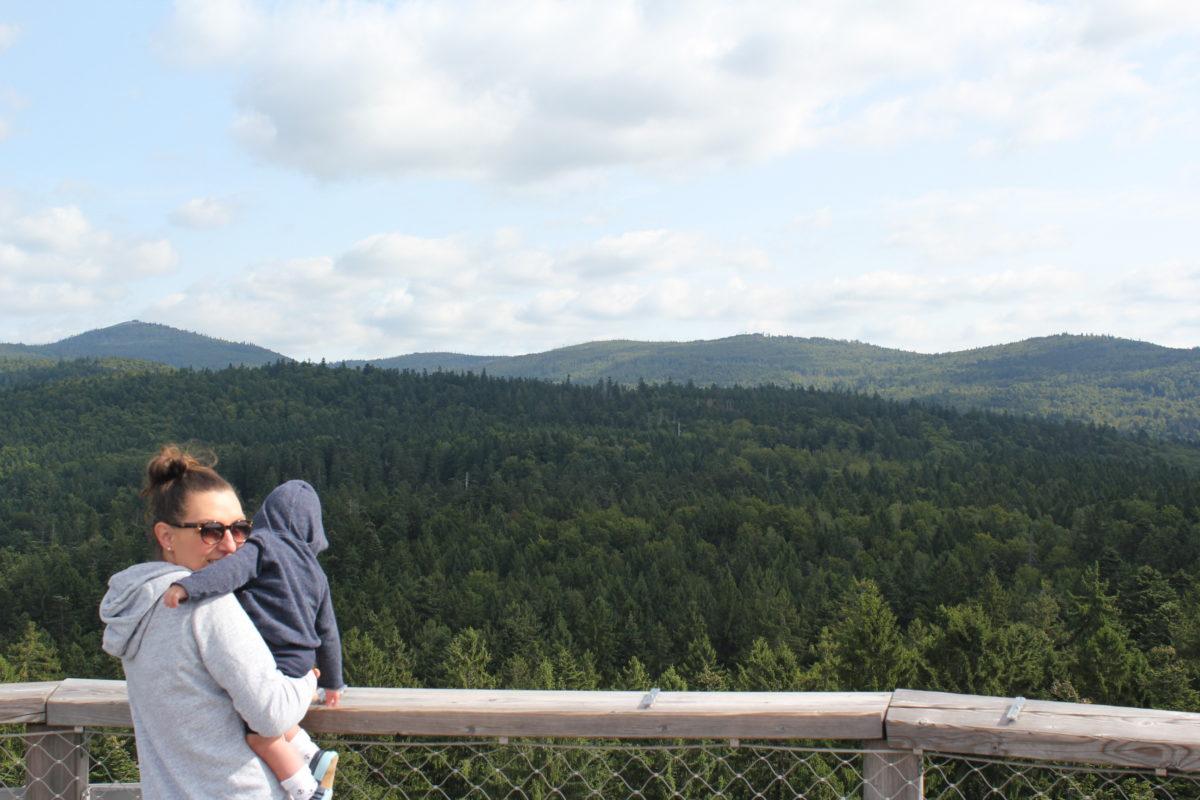 Damals, als Auszeiten noch erlaubt waren: Bayerischer Wald